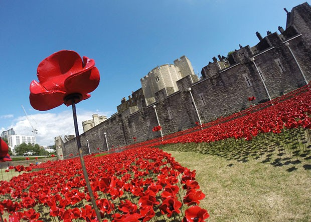 Thousands of ceramic poppies at the Tower of London